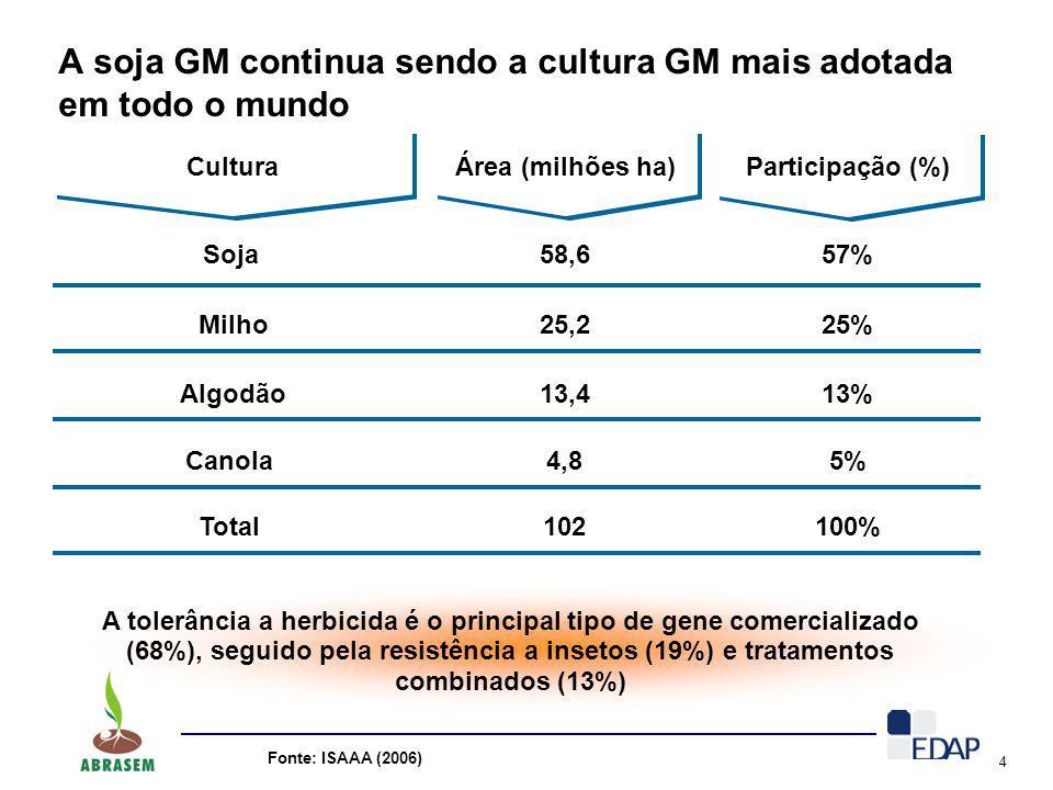 A soja GM continua sendo a cultura GM mais adotada em todo o mundo