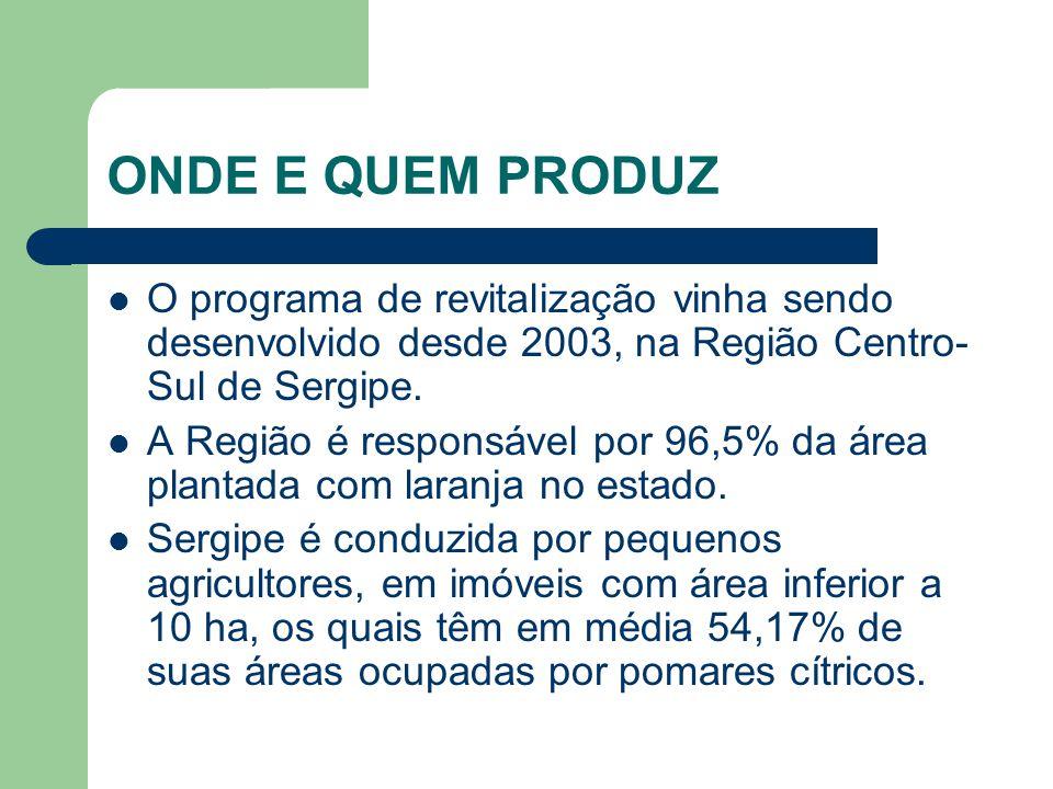 ONDE E QUEM PRODUZ O programa de revitalização vinha sendo desenvolvido desde 2003, na Região Centro-Sul de Sergipe.