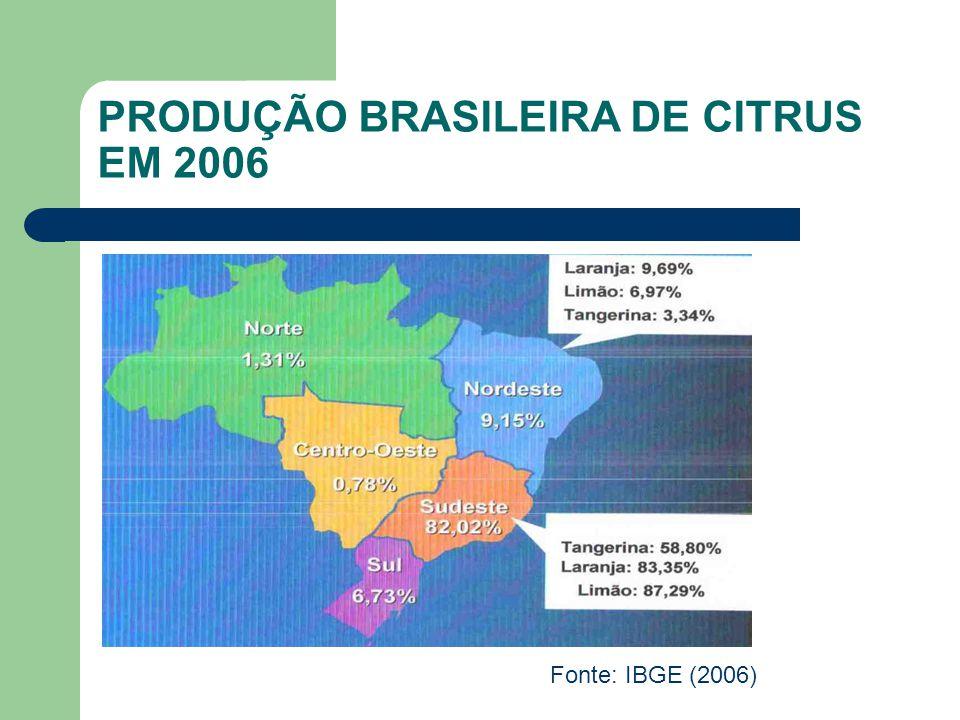PRODUÇÃO BRASILEIRA DE CITRUS EM 2006