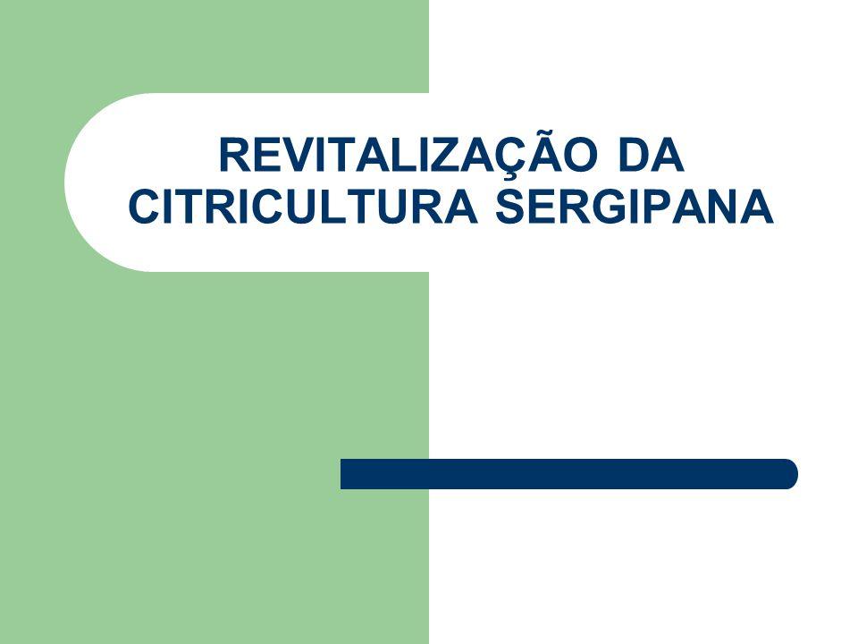 REVITALIZAÇÃO DA CITRICULTURA SERGIPANA