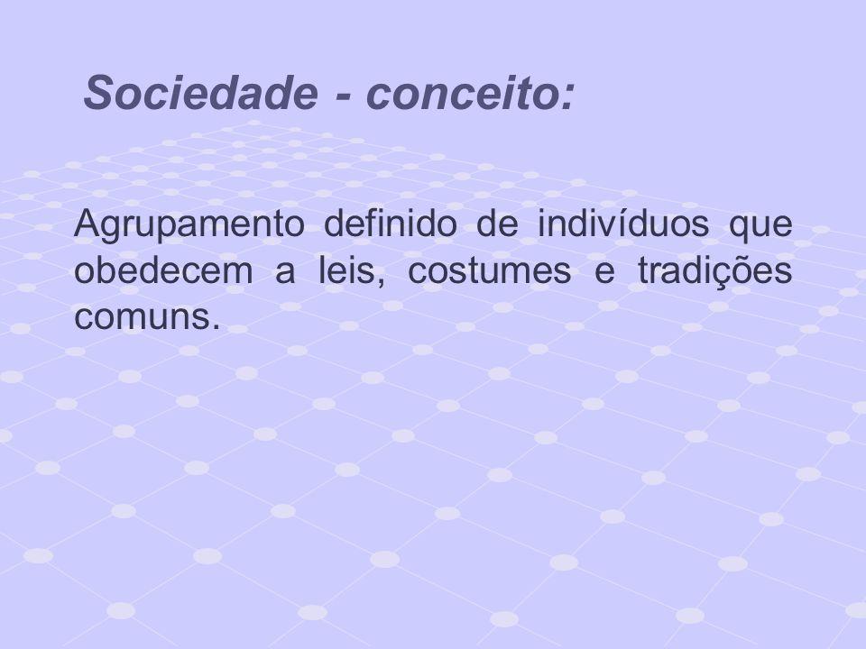 Sociedade - conceito: Agrupamento definido de indivíduos que obedecem a leis, costumes e tradições comuns.