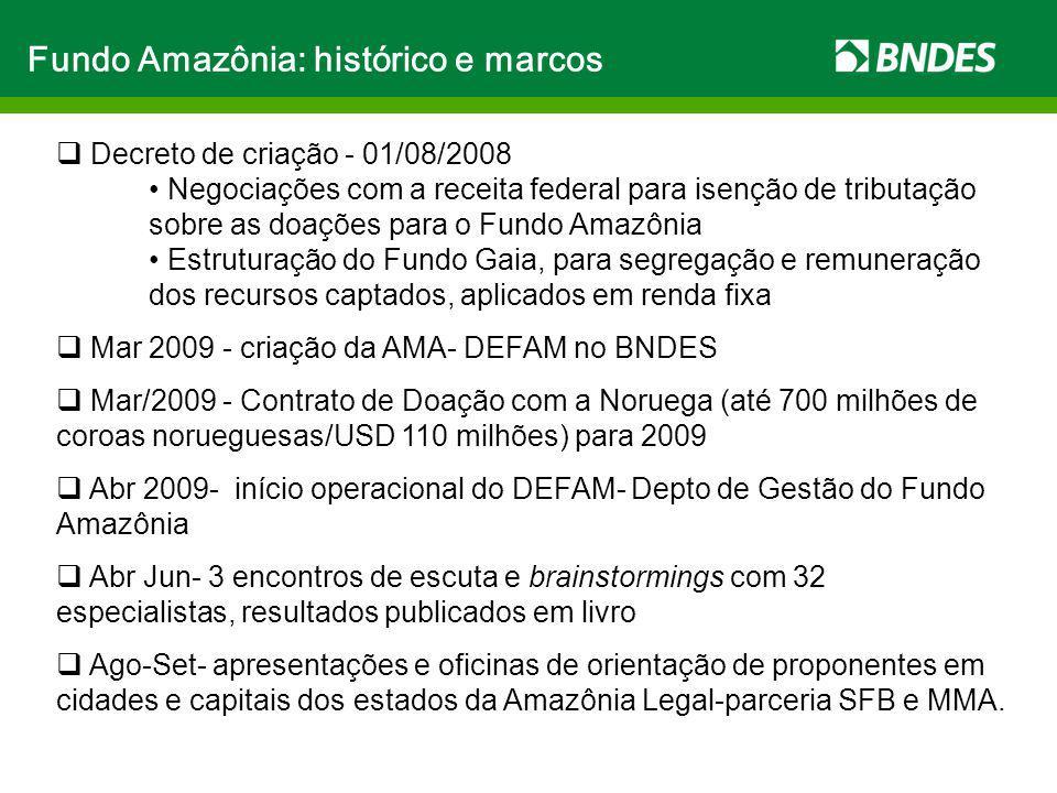 Fundo Amazônia: histórico e marcos
