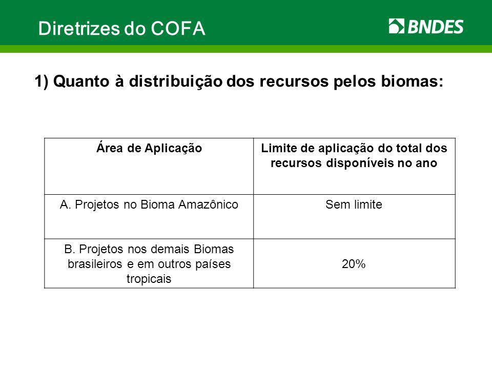 Limite de aplicação do total dos recursos disponíveis no ano