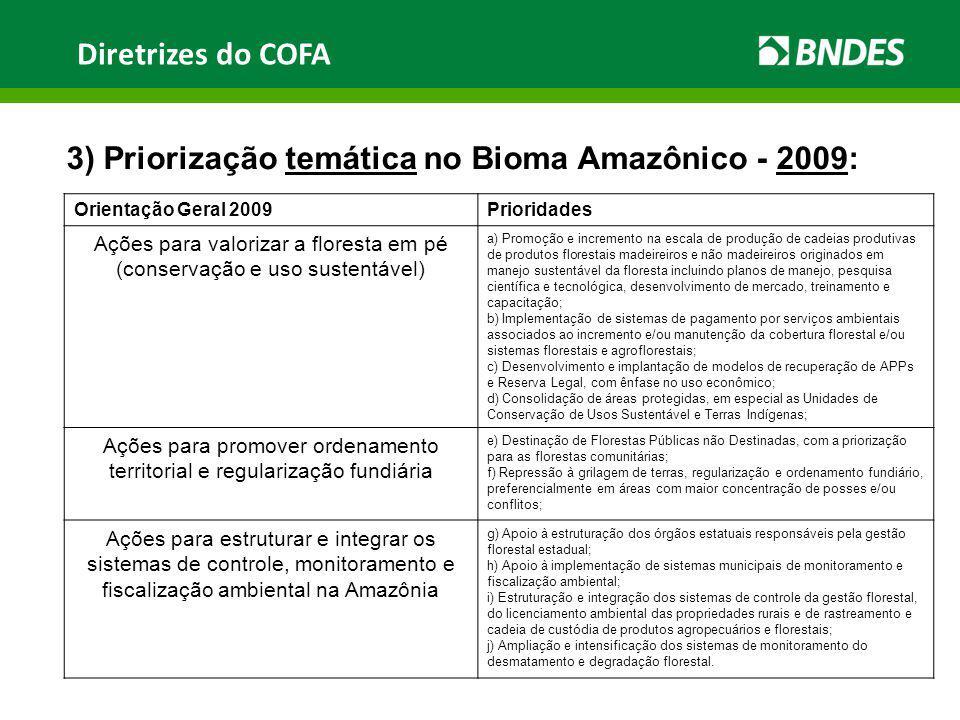 Diretrizes do COFA 3) Priorização temática no Bioma Amazônico - 2009: