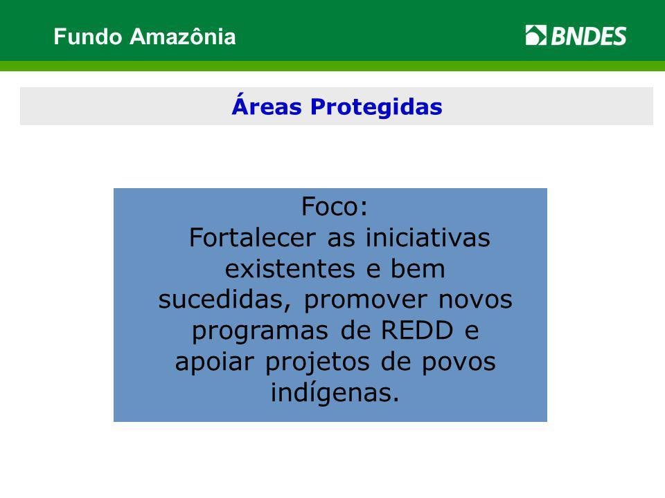 Fundo Amazônia Áreas Protegidas. Foco: