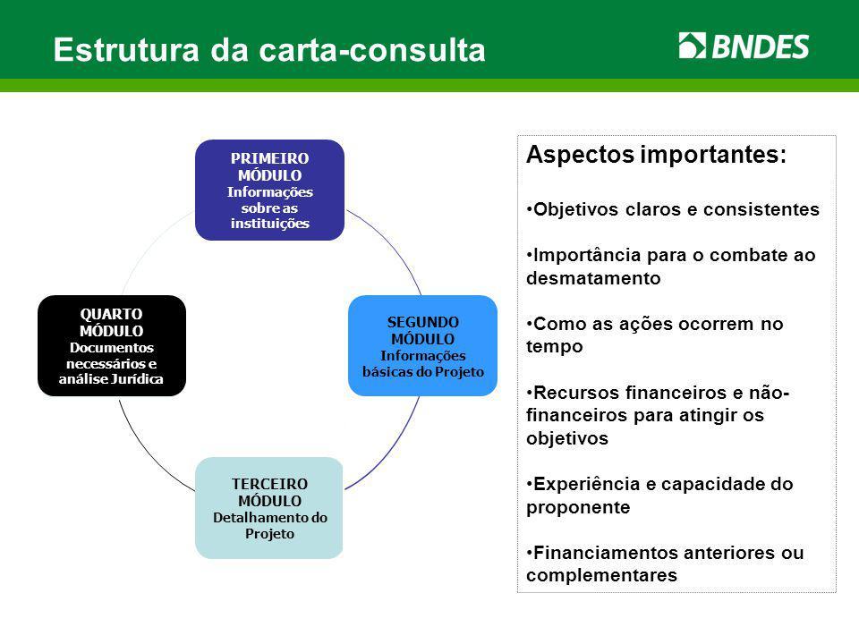 Estrutura da carta-consulta