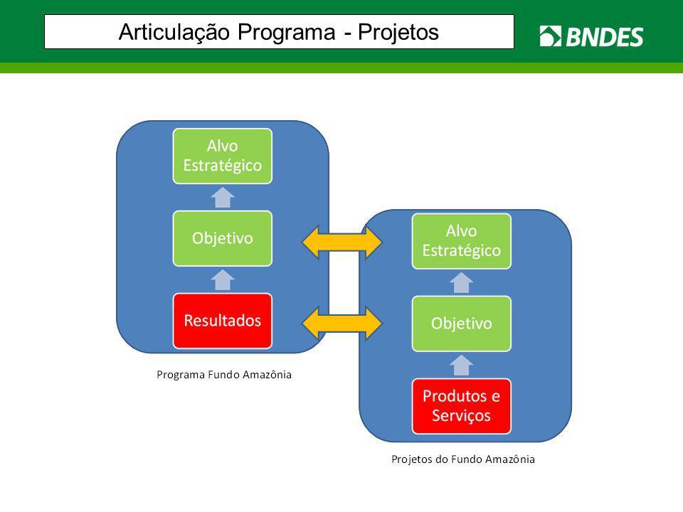 Articulação Programa - Projetos