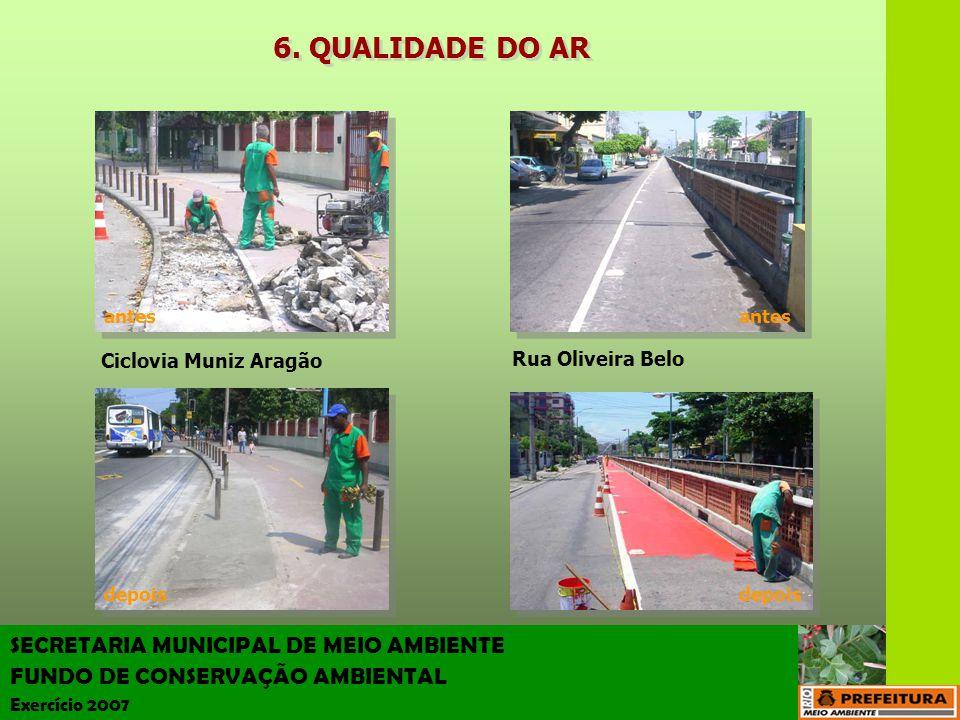 6. QUALIDADE DO AR SECRETARIA MUNICIPAL DE MEIO AMBIENTE