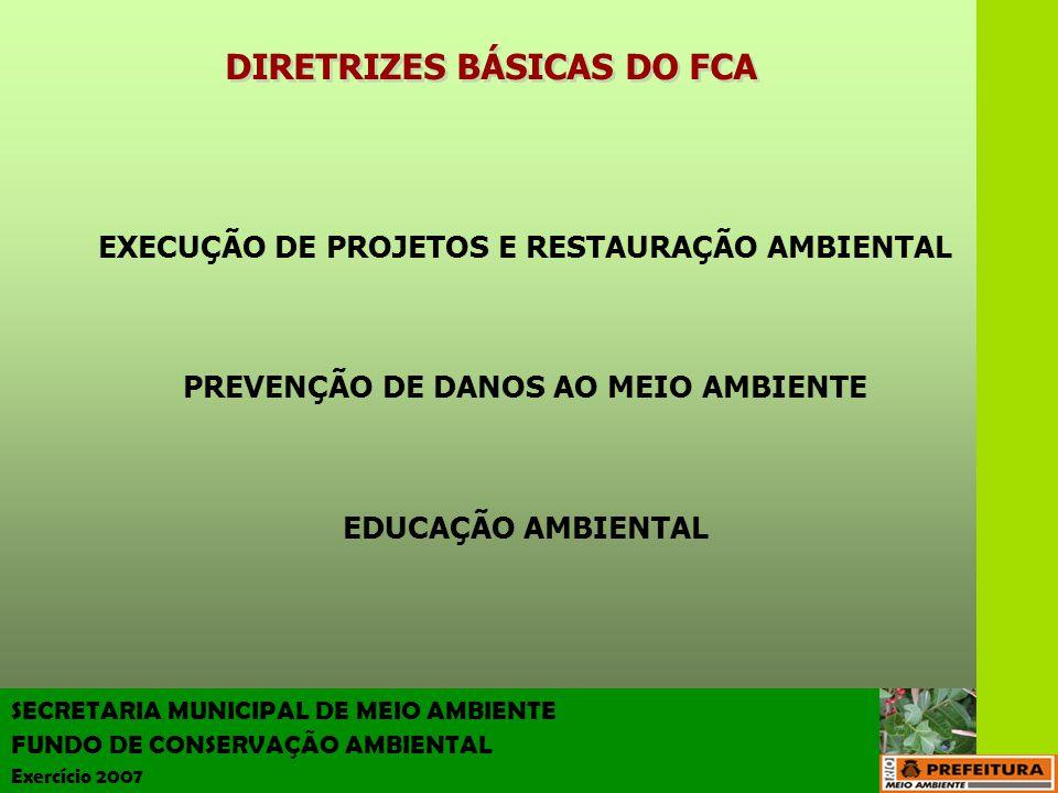 DIRETRIZES BÁSICAS DO FCA