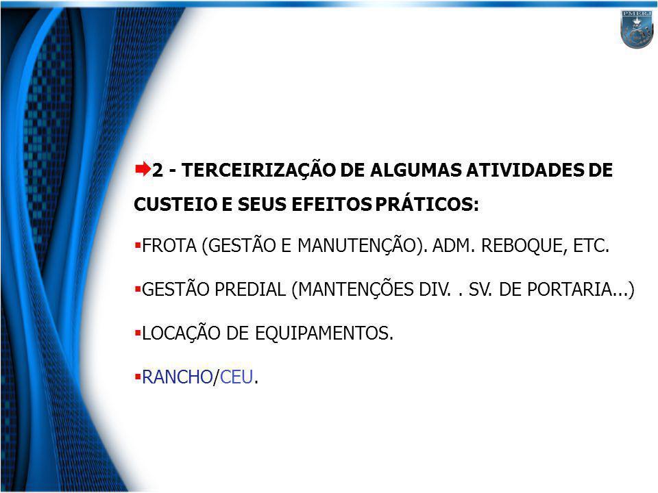 2 - TERCEIRIZAÇÃO DE ALGUMAS ATIVIDADES DE CUSTEIO E SEUS EFEITOS PRÁTICOS: