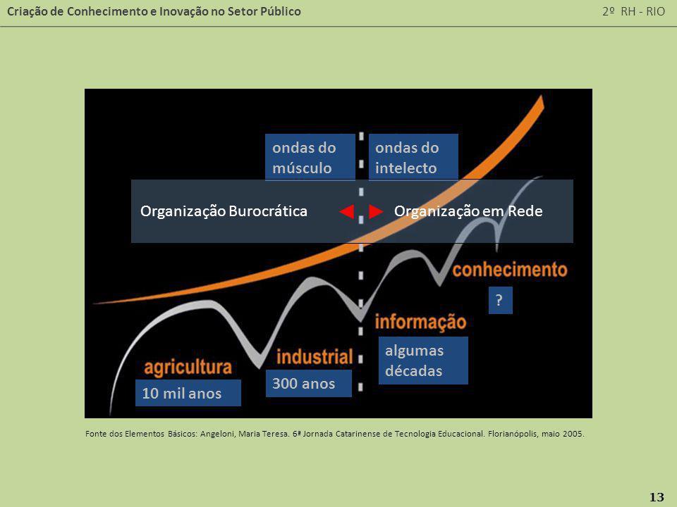 Organização Burocrática Organização em Rede