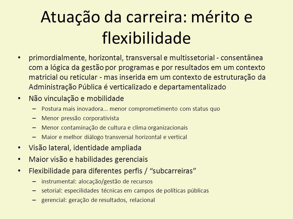Atuação da carreira: mérito e flexibilidade