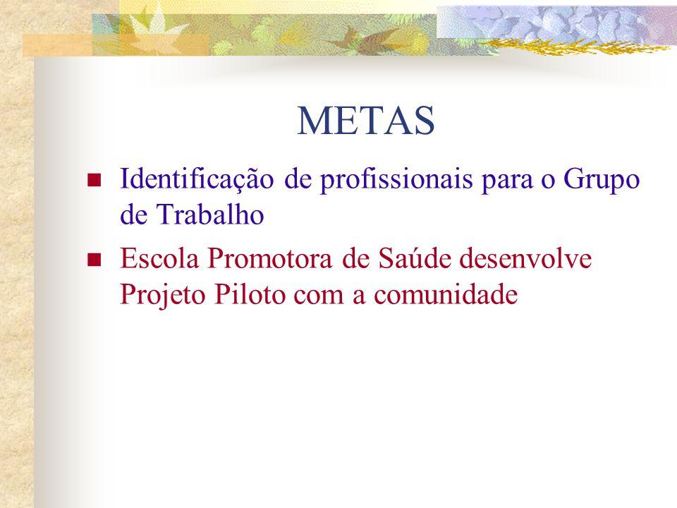 METAS Identificação de profissionais para o Grupo de Trabalho