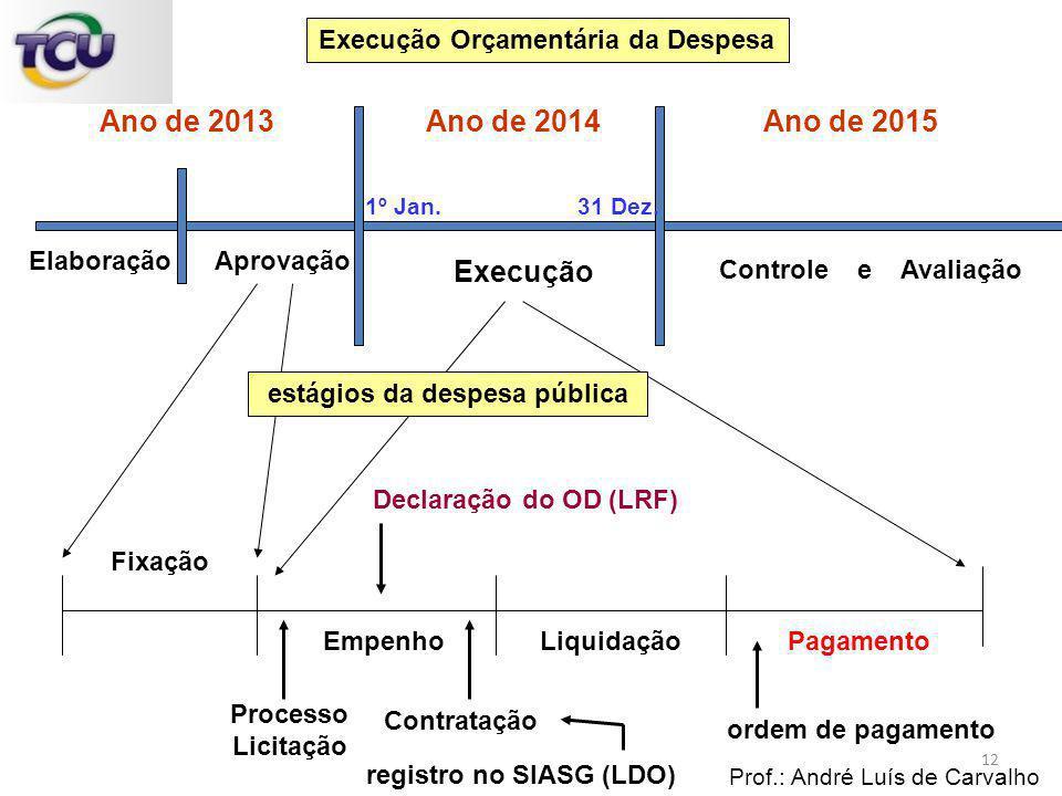 Execução Orçamentária da Despesa estágios da despesa pública