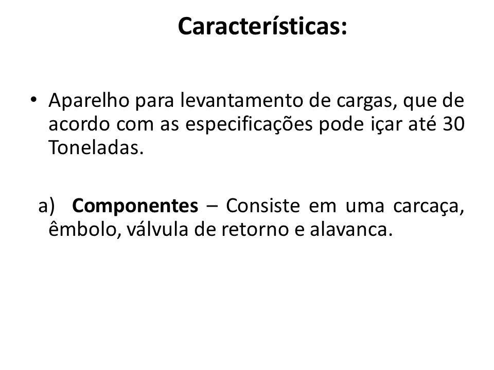 Características: Aparelho para levantamento de cargas, que de acordo com as especificações pode içar até 30 Toneladas.