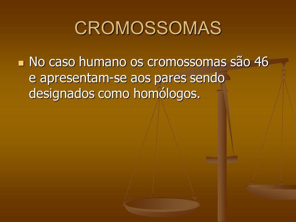 CROMOSSOMAS No caso humano os cromossomas são 46 e apresentam-se aos pares sendo designados como homólogos.