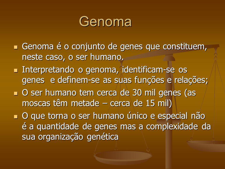Genoma Genoma é o conjunto de genes que constituem, neste caso, o ser humano.