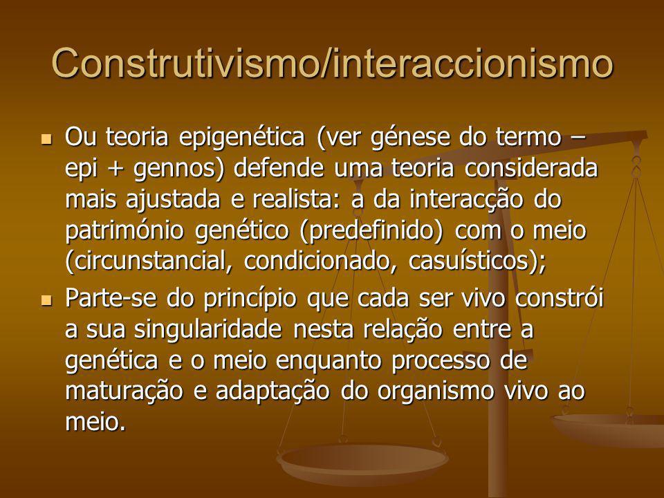 Construtivismo/interaccionismo