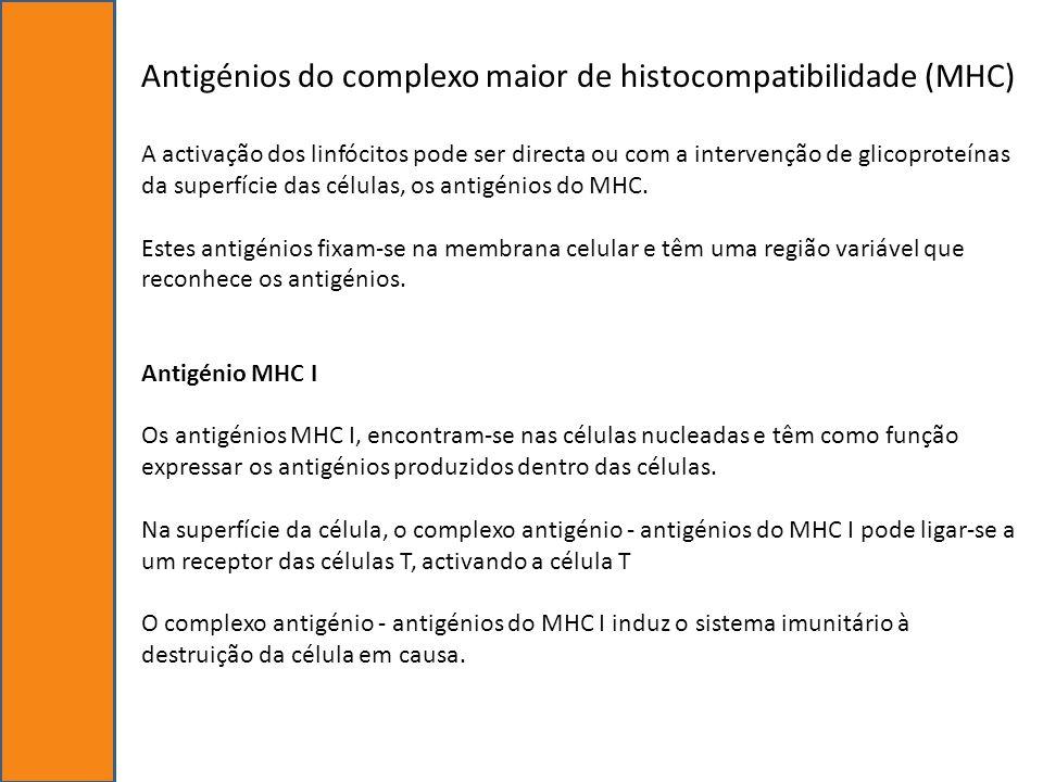 Antigénios do complexo maior de histocompatibilidade (MHC)