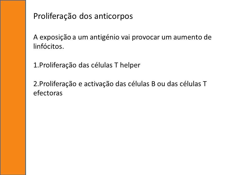 Proliferação dos anticorpos