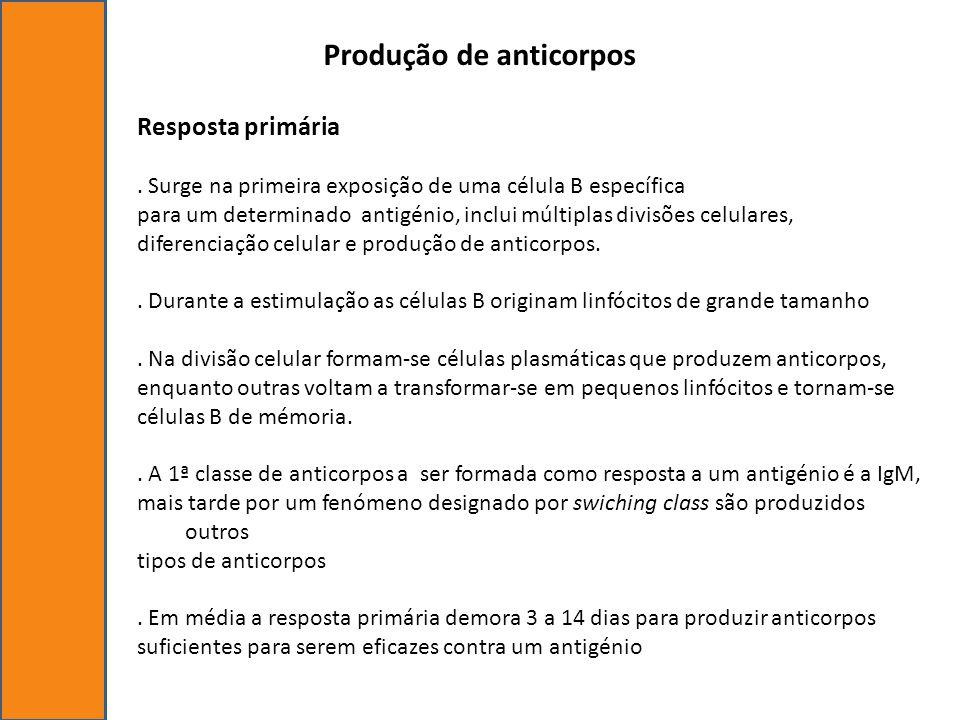 Produção de anticorpos