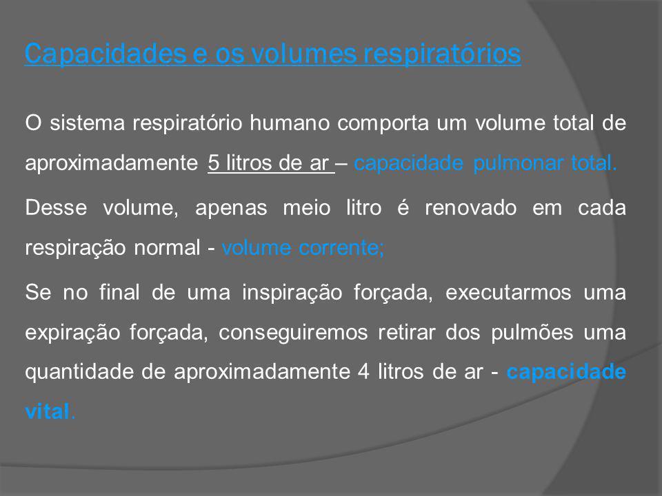 Capacidades e os volumes respiratórios