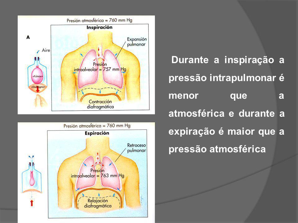Durante a inspiração a pressão intrapulmonar é menor que a atmosférica e durante a expiração é maior que a pressão atmosférica