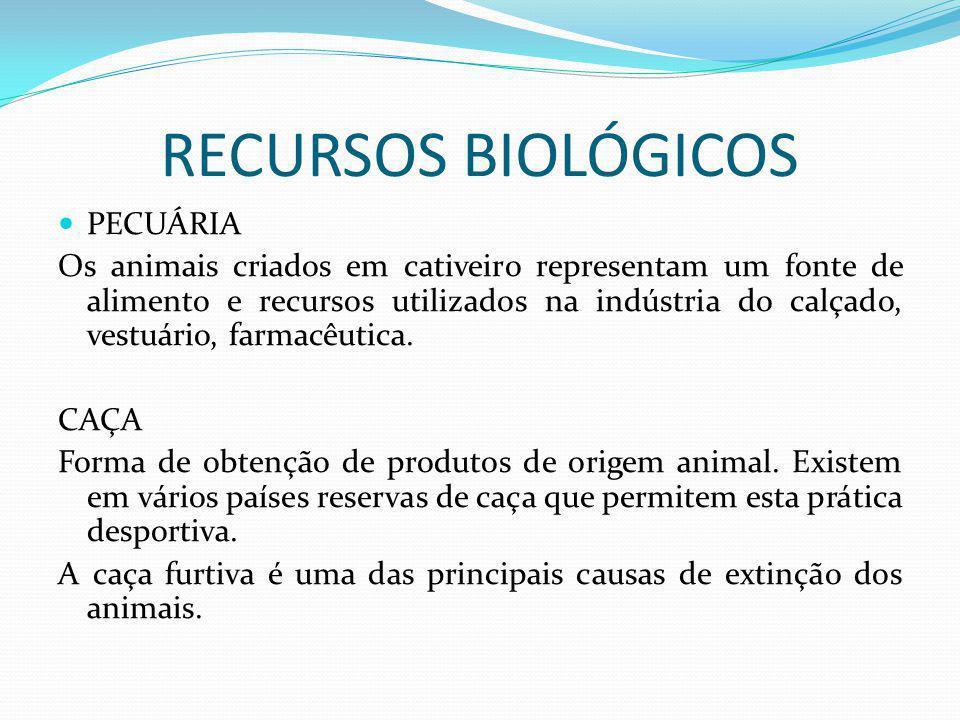 RECURSOS BIOLÓGICOS PECUÁRIA