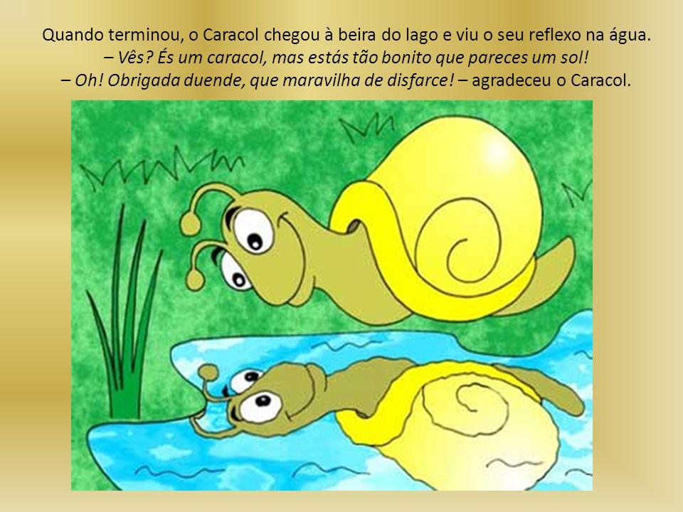 Quando terminou, o Caracol chegou à beira do lago e viu o seu reflexo na água.