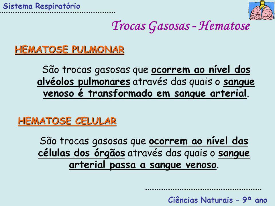 Trocas Gasosas - Hematose Ciências Naturais – 9º ano