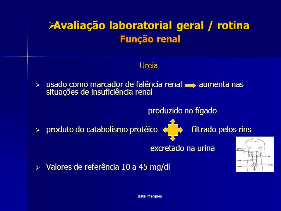 Avaliação laboratorial geral / rotina Função renal