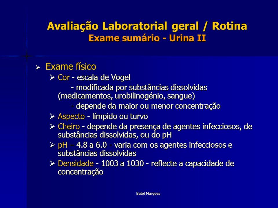 Avaliação Laboratorial geral / Rotina Exame sumário - Urina II