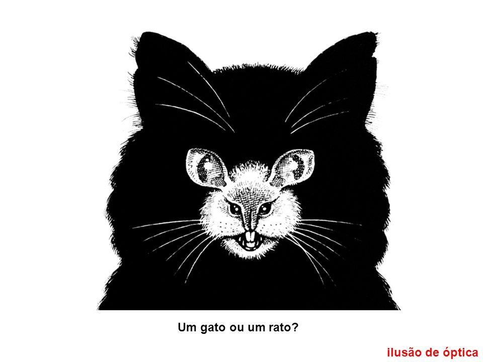 Um gato ou um rato ilusão de óptica