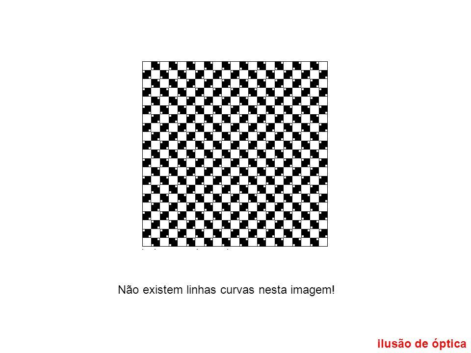 Não existem linhas curvas nesta imagem!