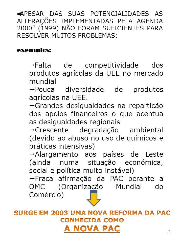 SURGE EM 2003 UMA NOVA REFORMA DA PAC