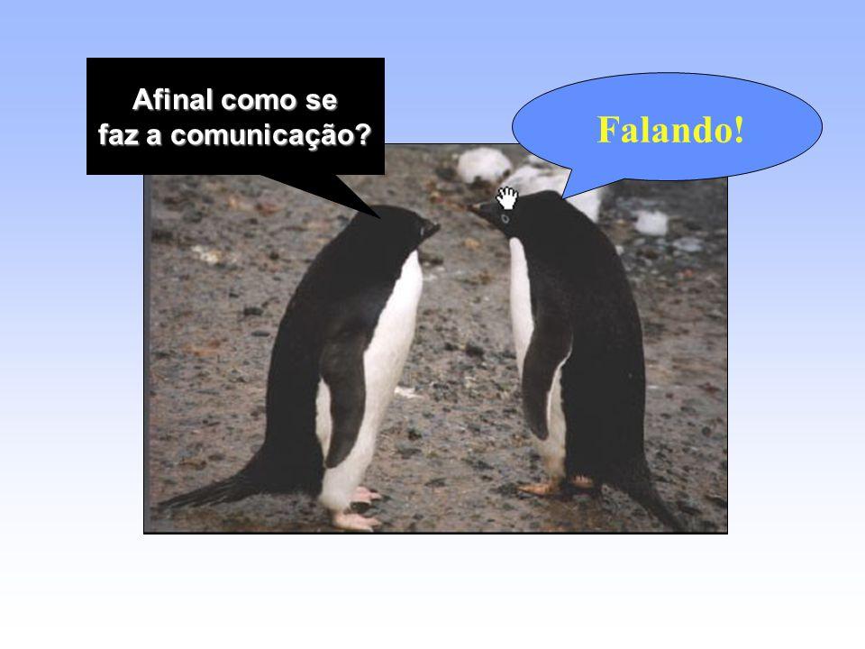 Afinal como se faz a comunicação Falando!