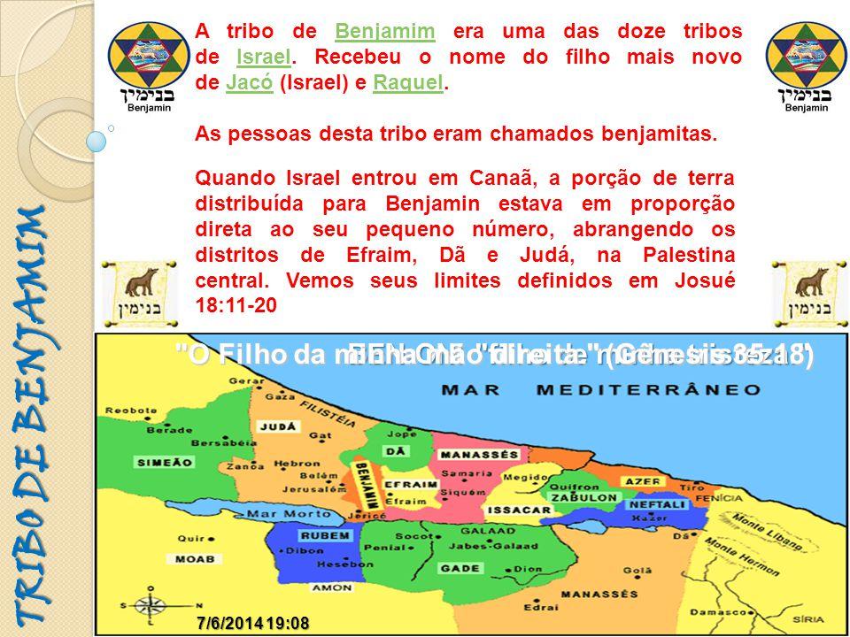 TRIBO DE BENJAMIM O Filho da minha mão direita. (Gênesis 35:18)