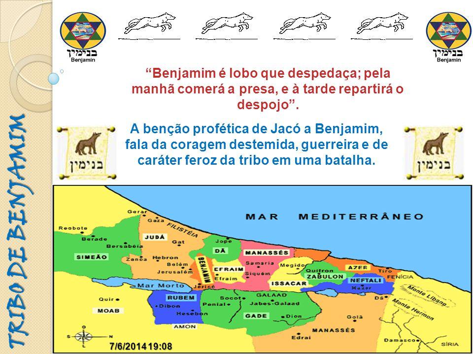 16:45:30 Benjamim é lobo que despedaça; pela manhã comerá a presa, e à tarde repartirá o despojo .
