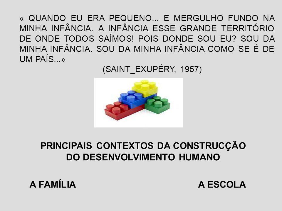 PRINCIPAIS CONTEXTOS DA CONSTRUCÇÃO DO DESENVOLVIMENTO HUMANO