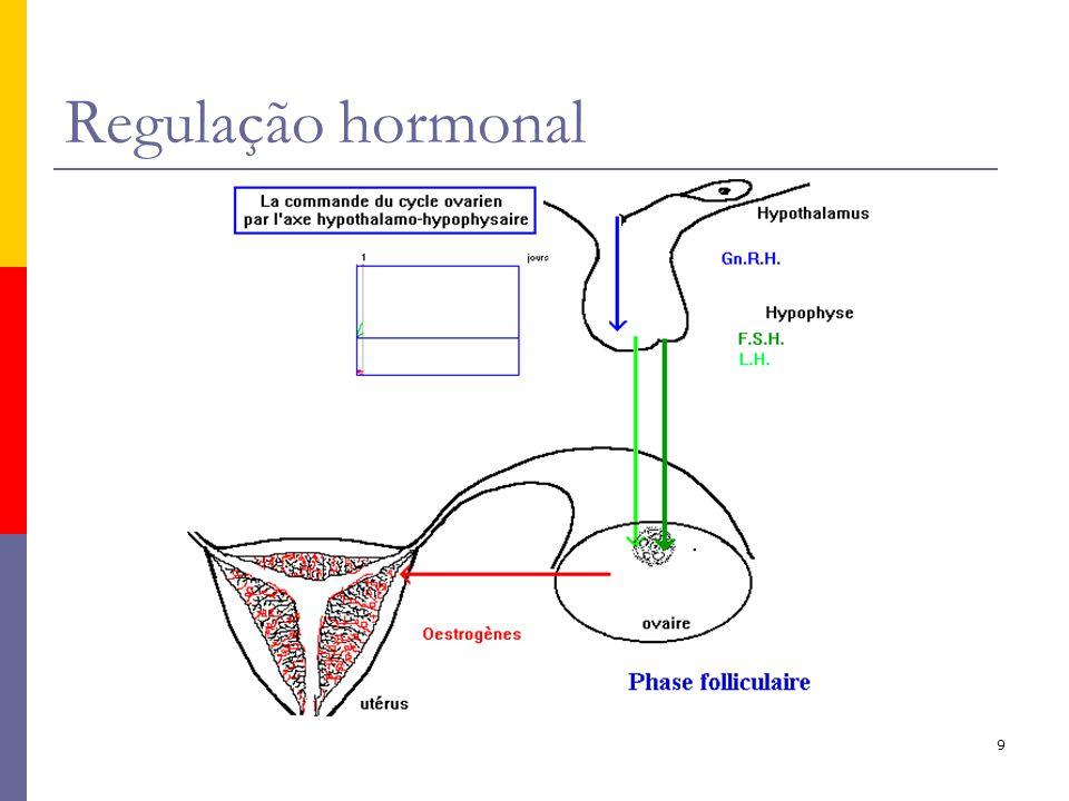 Regulação hormonal