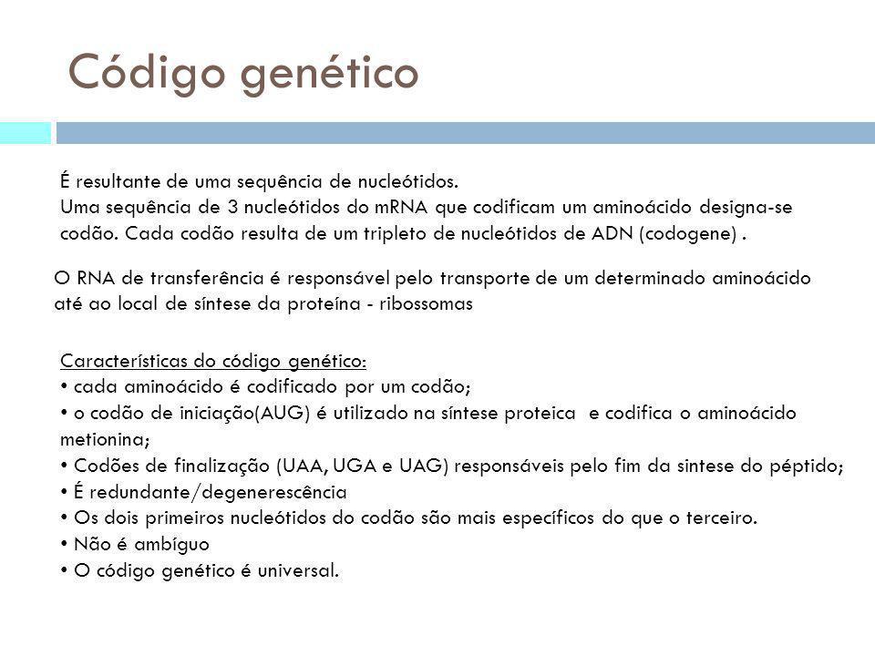 Código genético É resultante de uma sequência de nucleótidos.