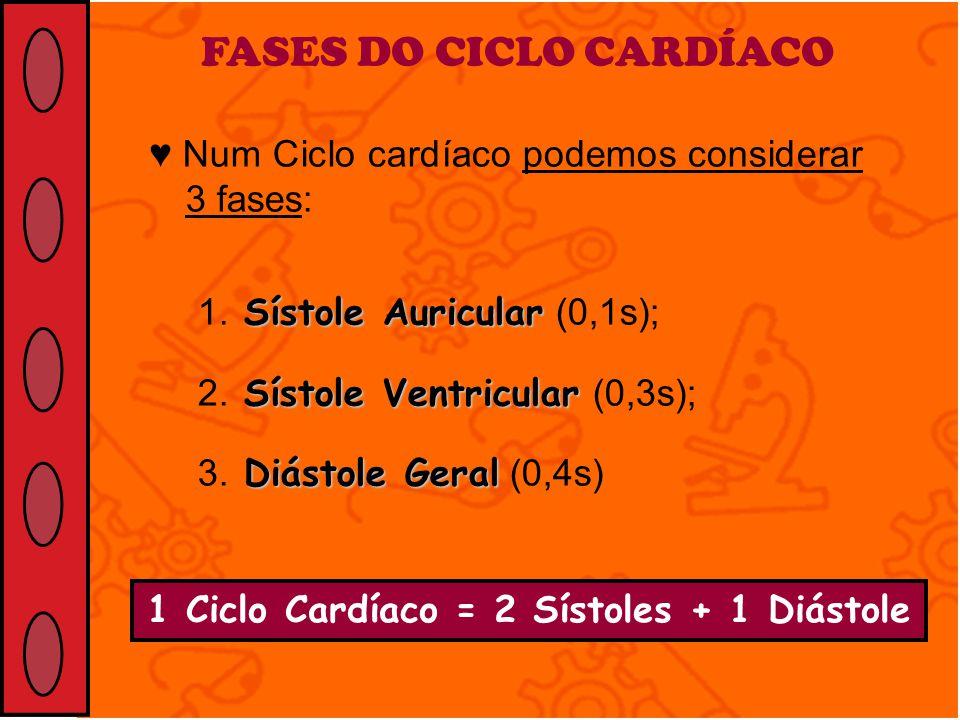 1 Ciclo Cardíaco = 2 Sístoles + 1 Diástole