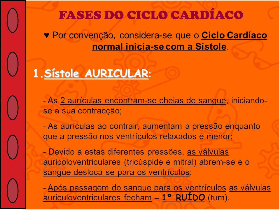 FASES DO CICLO CARDÍACO
