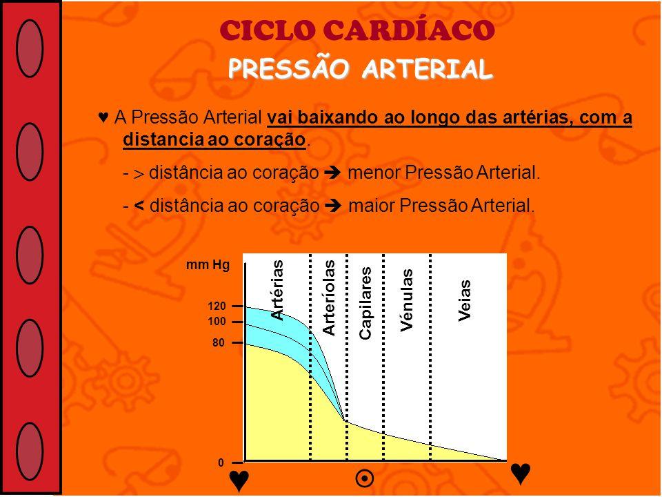 ♥ ♥ CICLO CARDÍACO PRESSÃO ARTERIAL 