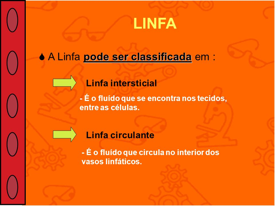 LINFA  A Linfa pode ser classificada em : Linfa intersticial