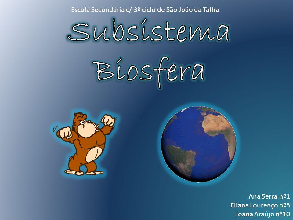 Subsistema Biosfera Escola Secundária c/ 3º ciclo de São João da Talha