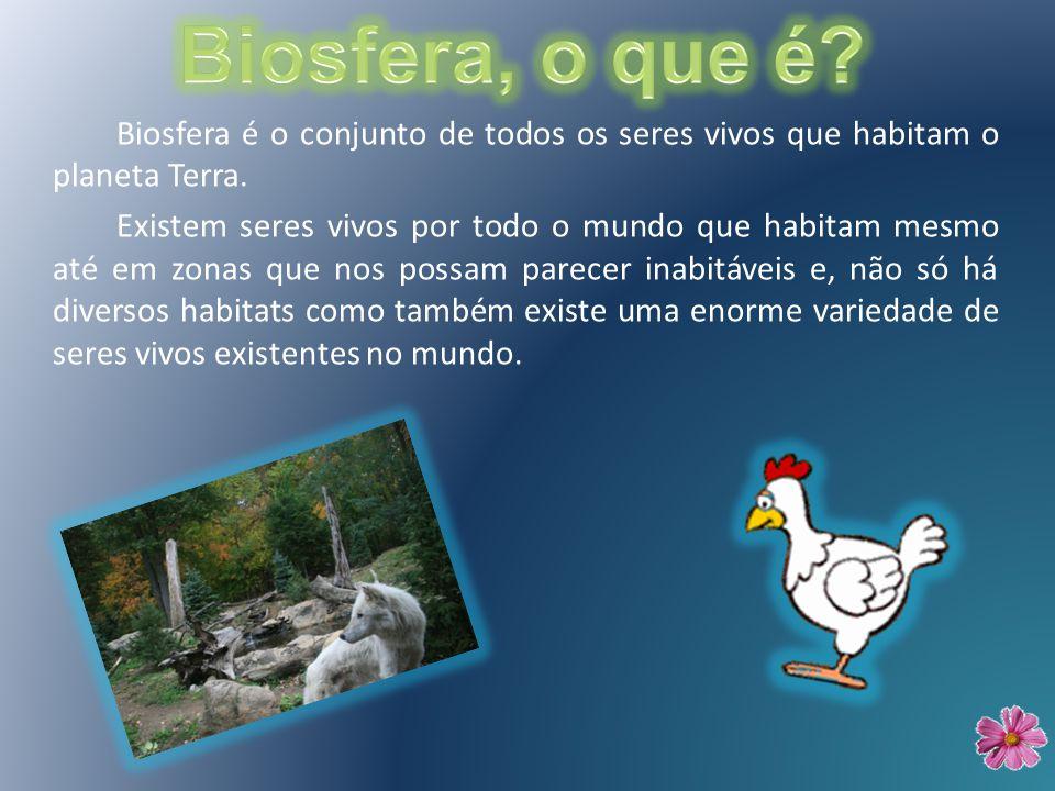 Biosfera, o que é