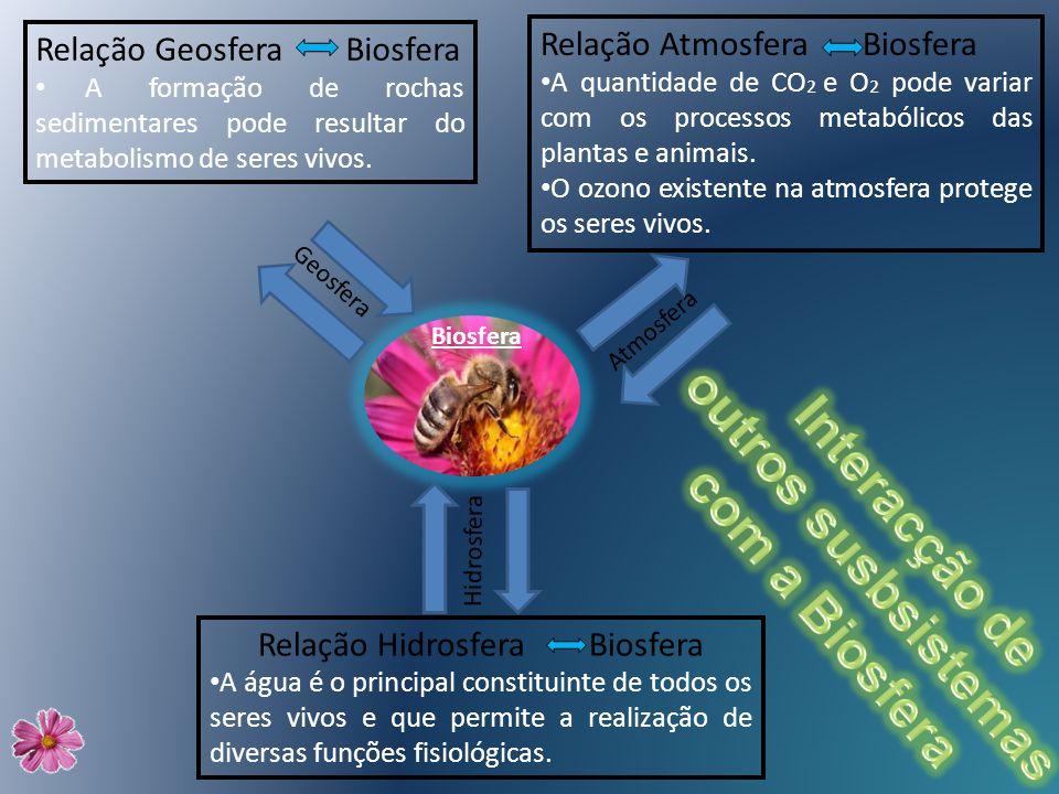 Relação Hidrosfera Biosfera