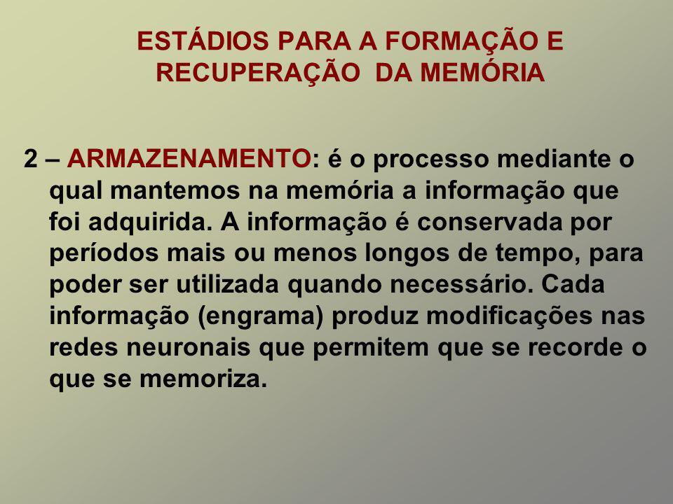 ESTÁDIOS PARA A FORMAÇÃO E RECUPERAÇÃO DA MEMÓRIA