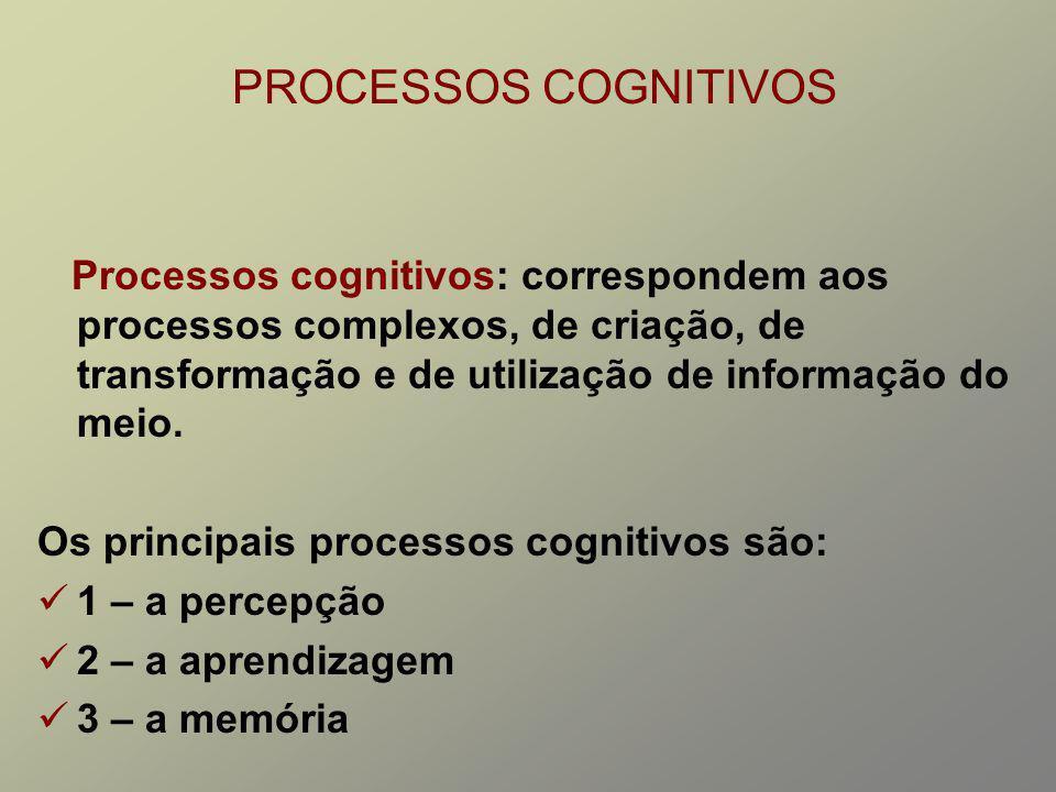 PROCESSOS COGNITIVOS Processos cognitivos: correspondem aos processos complexos, de criação, de transformação e de utilização de informação do meio.